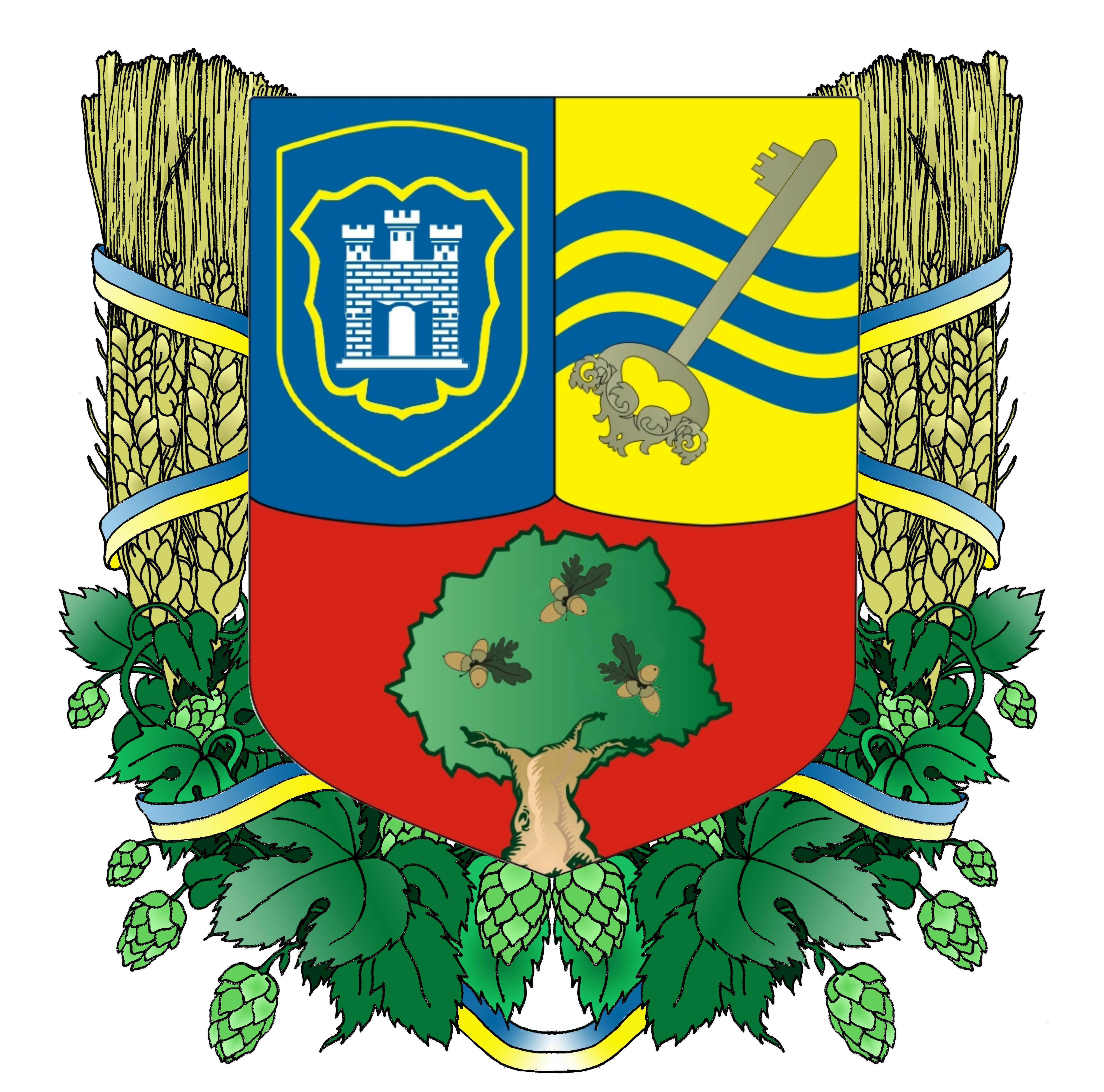 zhytomyrska-raionna-rada