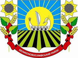 velykonovosilkivska-raionna-derzhavna-administratsiia-donetskoi-oblasti