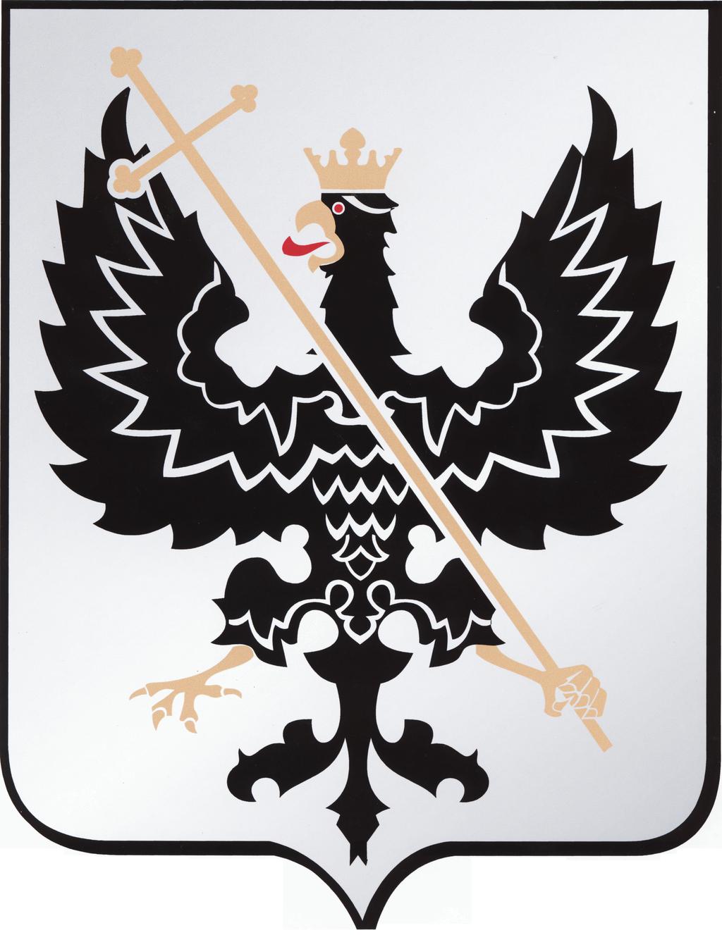 chernihivska-miska-rada