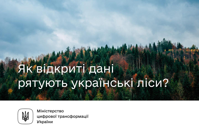 Як відкриті дані рятують українські ліси?